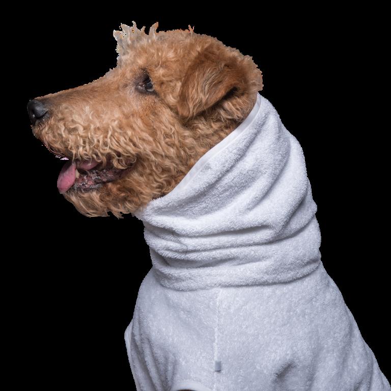 Hundebademantel Dogius